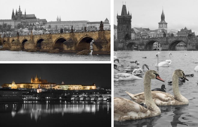 Prague in the picture.jpg